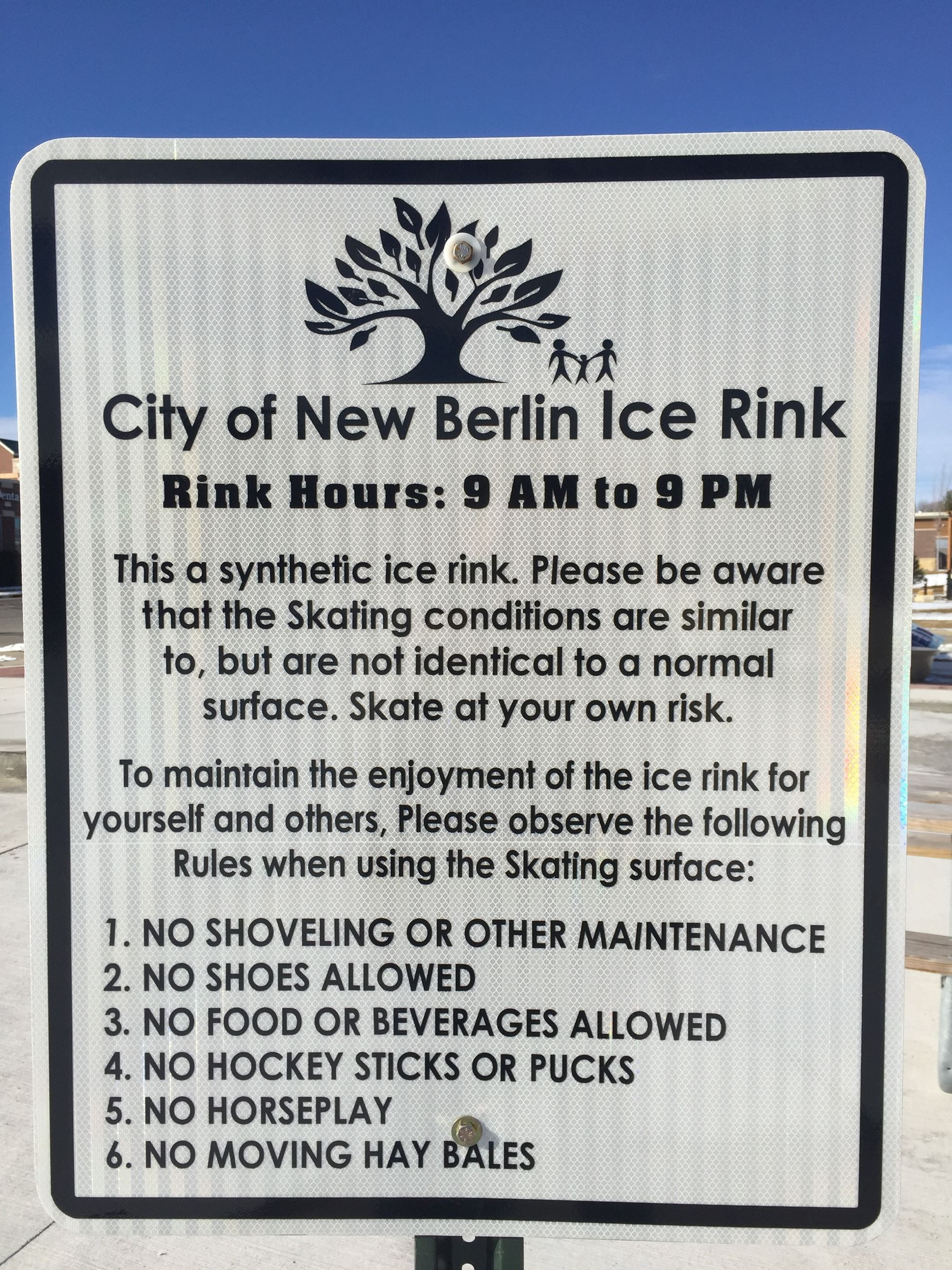 ICE RINK RULES (2)