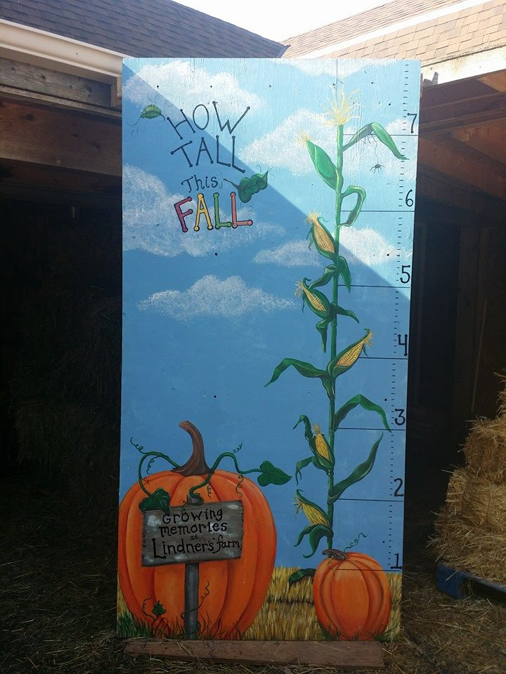 how tall is this fall.jpg
